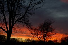 An angry sky... (KsCattails) Tags: sky sunset kscattails nikond7000 evening fall silhouette tree dark angry
