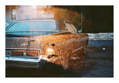 (Drew Amyot) Tags: drewamyot 2016 car nikonf4 kodakportra160 edmontonphotography filmphotography analogphotography doubleexposure