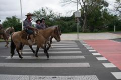 DSC_5448 (neyde zys) Tags: bandadabrigada brigadamilitar desfilefarroupilha gauchos indumentaria prendas tradicao