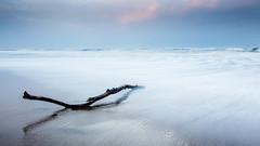 Week 42 - Drifting (f22 Digital Imaging) Tags: wexmondays2016 wpoty2016 landscape seascape sunset whitleybay sea coast ocean beach driftwood waves bluescape