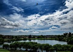 La belleza de la naturaleza. (Nicols Quezada) Tags: belleza naturaleza laguna nubes cielo concepcin chile flickrunitedaward