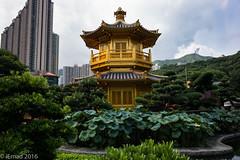 Golden temple and the green garden... (EHA73) Tags: summicronm1228asph leica leicam typ240 hongkong temple golden greenery nanliangarden travel buildings towers mountain