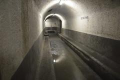 Un corridoio del rifugio antiaereo sotto piazza Pretoria (costagar51) Tags: palermo sicilia sicily italia italy storia anticando