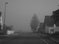 morning haze (3) (BZK2011) Tags: hohbhn dorf village schwarzweis blackandwhite countryroad landstrase morgennebel morninghaze canon powershot s100 morgendlicherdunst tanne baum tree