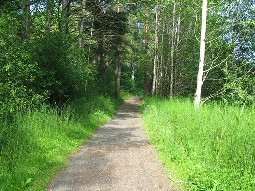 Trail to Runhällsgatan and Trolldalen in Göteborg, 2012 (12)