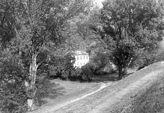iph501x (gzammarchi) Tags: italia paesaggio natura pianura campagna ravenna sanmarco casa albero pioppo bn explore
