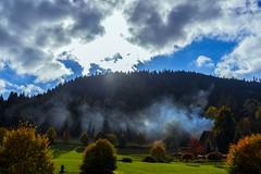 DSC09304 (Aljoscha Laschgari) Tags: black forest tress trees sun fog water blue green orange mountain