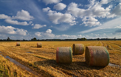 Wet & Cut (Stievesox) Tags: nikon d7000 tokina 1116 rural country bales wet clouds sky cut field