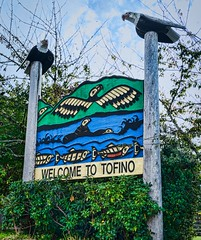 Welcome to Tofino (spetersonphotography) Tags: tofino westcoast westcoastvancouverisland tourists longbeach pacificrim pacificrimnationalparkreserve fishing fishboats inlet water pacificocean ocean docks wharves oldboats storms birdwatching sailboats tofinoair strawberryisland strawberryislandcommunity floathomes floatinghomes tofinoharbour tofinoinlet clayoquotsound floats buoys britishcolumbia canada nature nikond5200 nikon 2016 theinnattoughcity icehouseoysterbar