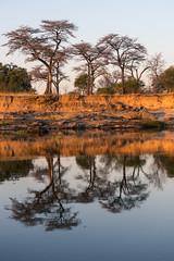 20160825_ZambeziReflections_MCM-12 (mcmessner) Tags: africa bjadventures blue morning morningboatride reflection southafrica2016 sunrise tongabezilodge zambeziriver zambia livinstone