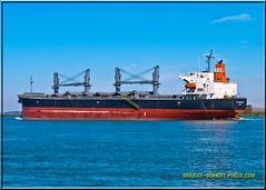 Sea Confidence 1530 LR (bradleybennett) Tags: cargo vessel ship shipping delta water river ocean tanker antioch seaconfidence sea confidence port stockton