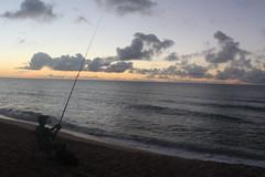 IMG_1455 (michelleingrassia) Tags: banzaipipeline northshore oahu hawaii hi sunset beach