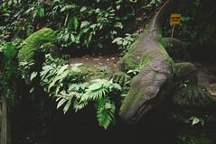 P1050291-Edit (F A C E B O O K . C O M / S O L E P H O T O) Tags: bali ubud tabanan villakeong warung indonesia jimbaran friendcation