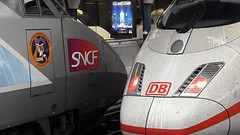 Face to face  for P. ! (Octobre  2016) (Ostrevents) Tags: bruxelles brussels capitale europe europa belgie begium belgique garedebruxellesmidi bruxellesmidi brusselsmidistation brusselzuid brusselssouth sud south zuid gare station chemindefer railways tgv rame4526 4526 ice sncf db autocollant sticker logo carmillon jeu game parrainage herrypoter harry poter poudlard destination thtre theater rve dream spectacle show chn ostrevents