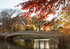 Bow Bridge (Tim Gupta) Tags: nyc newyorkcity centralpark landscape fall fallfoliage fallcolors bowbridge