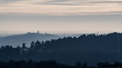 Burglengenfeld (Florian Grundstein) Tags: castle burg burglengenfeld kirche church trees forest landscape landschaft misty layers deep wide view wallpaper oberpfalz upperpaltinate skyscape picoftheday nopeople nature winter