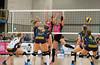 2B121891 (roel.ubels) Tags: flamingos 56 gennep pica mare peelpush volleybal volleyball eredivisie sport topsport 2016
