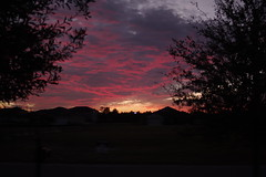 Pink sunset (lolamorena) Tags: sunset colors color fall autumn clouds red dusk tampa stunning beautiful nature natural unprocessed nofilter raw beauty