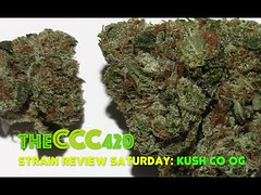 Strain Review Saturday Ep. 9: Kush Company OG (kmobocunib1970) Tags: bong bongrip bongtoke bud cannabis cultivar dank grinder herb kushcompany kushco marijuana mmj nugs ogkush strain vaporizer waterpipe weed