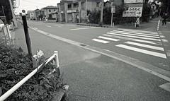 One scene of commuting 2016/10 No.12(taken by film camera). (HIDE@Verdad) Tags: leica leicaif if xp2 superwideheliar15mm