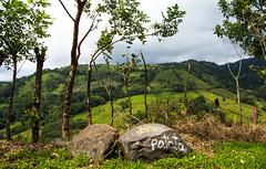 Patata (Viv Lynch) Tags: centralamerica costarica puravida travel travelling 2016 atenas graffiti roadtrip autumn november northamerica tourist
