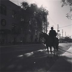 Cowboy Cop. #toronto #tps #mounted #canada #blackandwhite #horse #police