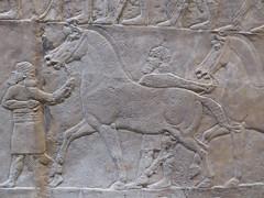 Horses (Aidan McRae Thomson) Tags: nineveh relief britishmuseum london assyrian sculpture mesopotamia ancient