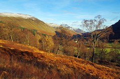 Glen Lyon (Late Autumn) (eric robb niven) Tags: ericrobbniven scotland glenlyon landscape trees nature autumnwatch winter dundee