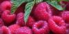 Envie gourmande (nathaliedunaigre) Tags: fruits gourmandises yummy framboises strawberries rose pink appétissant jardin été summer garden