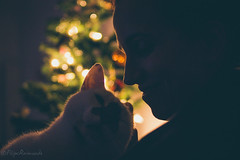 Cat lady (FMCRphotography) Tags: love cat animal colors bokeh smile winter cold hollyday