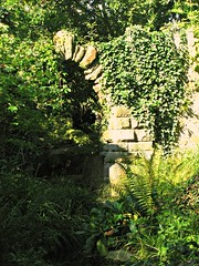 Arch in the Green (Dave Roberts3) Tags: grass wall wales leaf ivy ferns gwent ribbet monmouthshire caldicot sunrays5