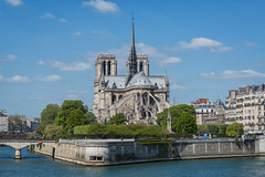 Notre Dame (Brian Hammonds) Tags: camera city trip travel shadow vacation portrait people urban holiday paris france color tower art history tourism beautiful beauty contrast french photography photo movement europe artist european photographer tour bright image euro exploring sightseeing picture culture vivid eu places eiffel tourist historic full adventure explore photographs photograph journey artists frame traveling foreign capture fx exploration touring parisian d800 traveler lightroom