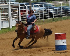 Welch Jr Rodeo, May 2014 (Garagewerks) Tags: horse pet oklahoma race sony junior rodeo athlete saddle equine 50500mm views50 views100 f4563 slta77v may2014horseequinecountrycowboycowgirlsigmabigma allsportwelchjrrodeo