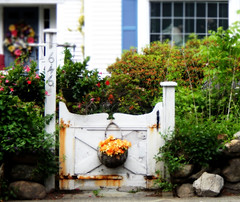 country cottage gate (stumblegeek) Tags: flowers horse house home stone fairytale fence gate basket country cottage lawn rocking quaint shrubs picket