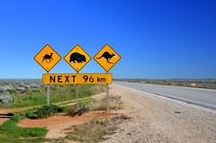 Nullarbor Warning Sign