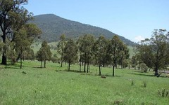 1000 Sandy Creek Road, Muswellbrook NSW