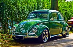 Beetle (gon Camargo) Tags: verde 50mm nikon beetle carro 50 folha paixo caminhos circulo antigo cromo fusca bezouro d300 rodas segue fixa