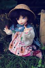 Jeliza-Rose (Lucy-Loves?) Tags: movie doll tabby barbie bjd fairyland tabitha ante tideland ltf yosd jelizarose littlefee