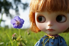 Blythe A Day 05 August 2014 - Favorite Flower
