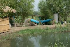 Khiva and Amu Darya Floodplain