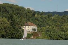 Schloss Schlosshof Schwrstadt ( Chteau - Castle ) am Rhein ( Hochrhein ) oberhalb Schwrstadt im Bundesland Baden - Wrttemberg in Deutschland (chrchr_75) Tags: chriguhurnibluemailch christoph hurni schweiz suisse switzerland svizzera suissa swiss chrchr chrchr75 chrigu chriguhurni 1408 august 2014 hurni140819 august2014 rhein rhin reno rijn rhenus rhine rin strom europa albumrhein fluss river joki rivire fiume  rivier rzeka rio flod ro