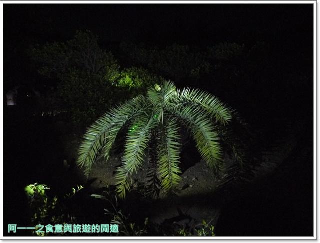 台東旅遊景點夜訪小野柳釋迦冰淇淋image022