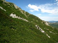 Faggeta sui fianchi del monte Motette (Luca Pisani) Tags: parco valle monte delle regionale cucco prigioni motette pascelupo
