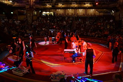 DSC09241 (Shadow Action) Tags: tower june circus blackpool 2014