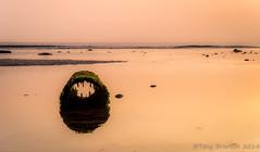 Pipe Dream. (Tony Brierton) Tags: ireland sea beach sunrise dawn bray sunup tideout irishsea cowicklow brayhead 12914