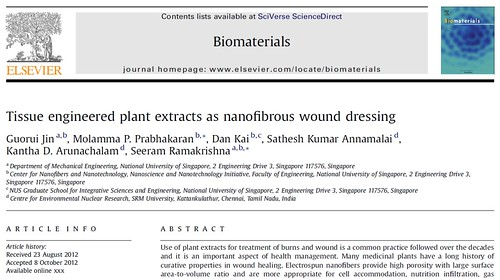 Tissue engineered plant extracts as nanofibrous wound dressing