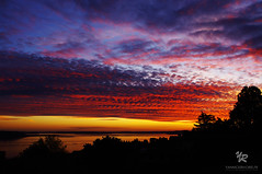 Relaxing time in front of a sunset at Seattle - USA (Yannick-R) Tags: seattle sunset usa nature night landscape washington state time relaxing front yannick rivoire