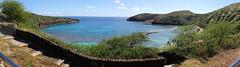Hanauma Bay (Aimee Does Art) Tags: ocean blue fish beach garden daylight awesome badass daytime majestic epic panaroma