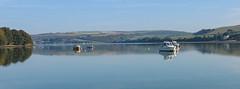 The Teifi Estuary