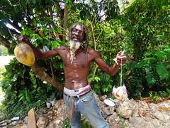 Any Coconuts? (dschoonen) Tags: old houses plants house green bird nature dreadlocks photoshop beard coconut sony poor birdhouse craft jamaica dread ocho dreads rasta rios rastafari rastaman